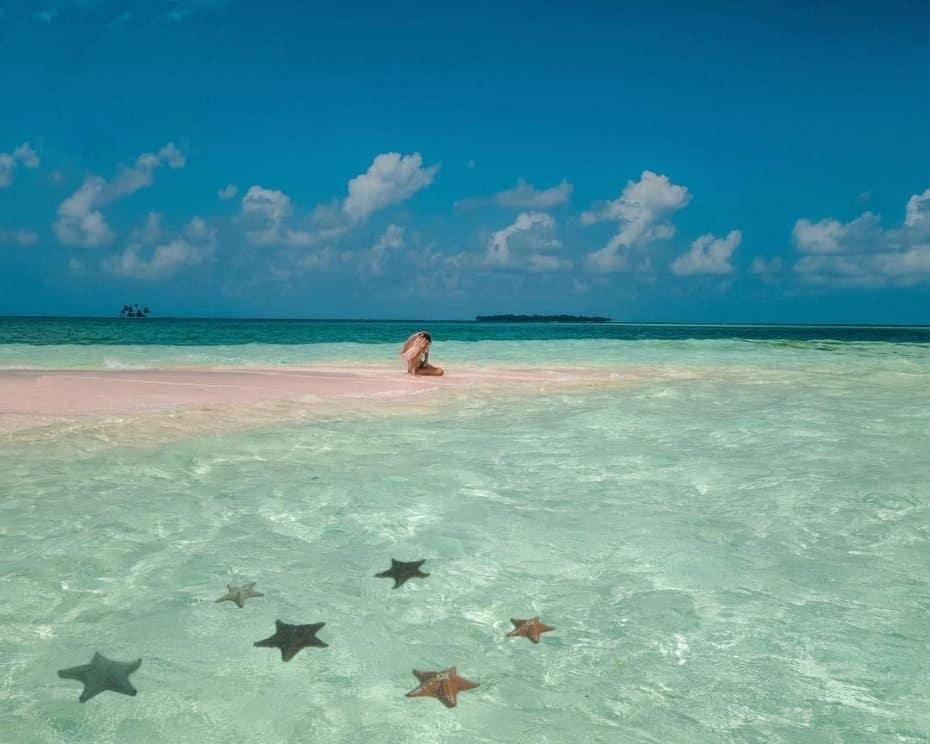 Estrelas do mar em San Blas