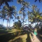 Como chegar na Praia dos Carneiros