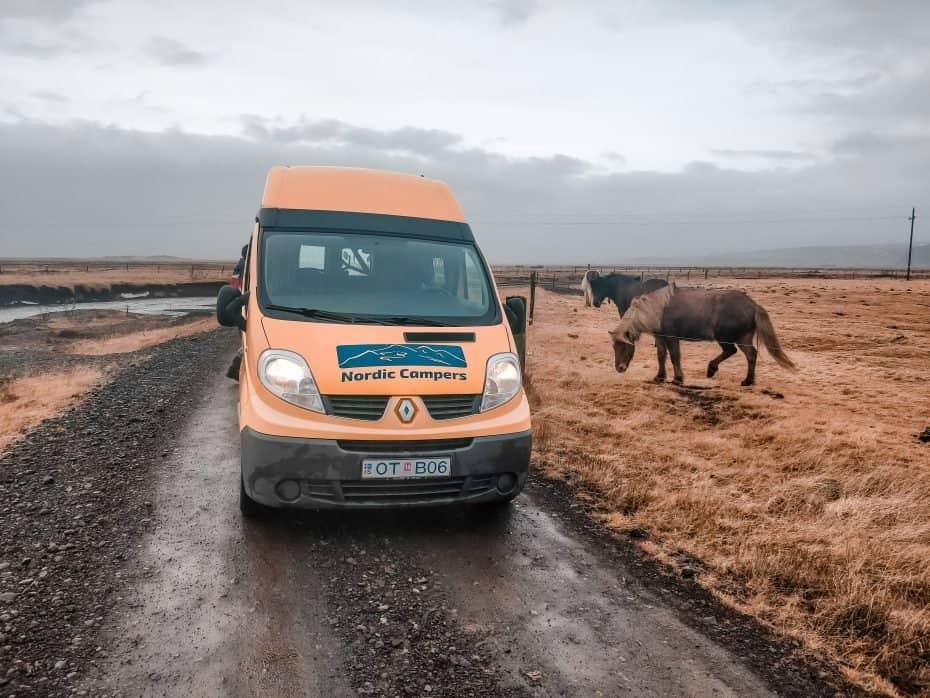 Campervan e os cavalos islandeses