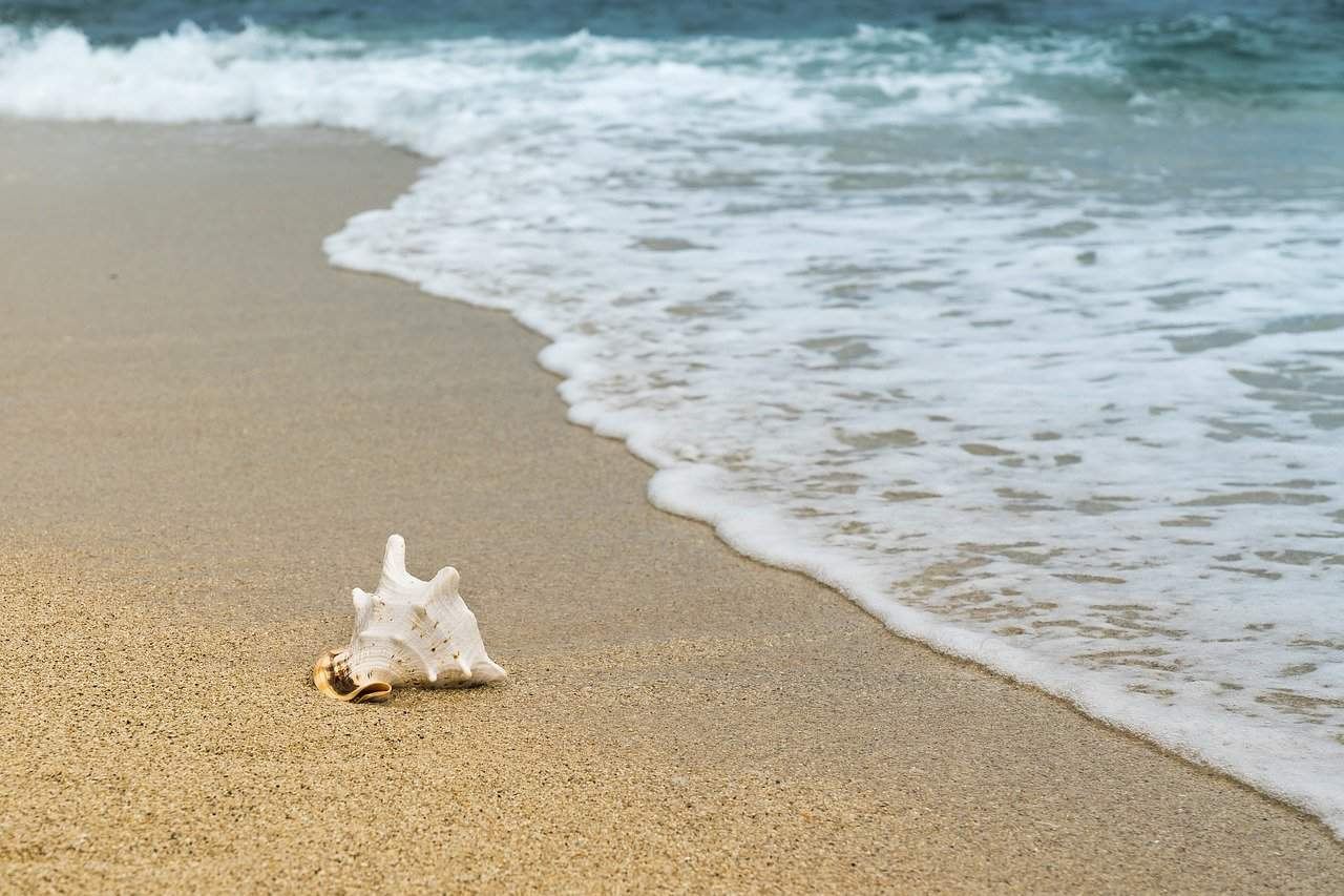praia da feiticeira ilhabela - beach
