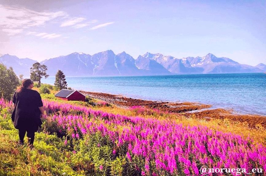 Tromso no verão.